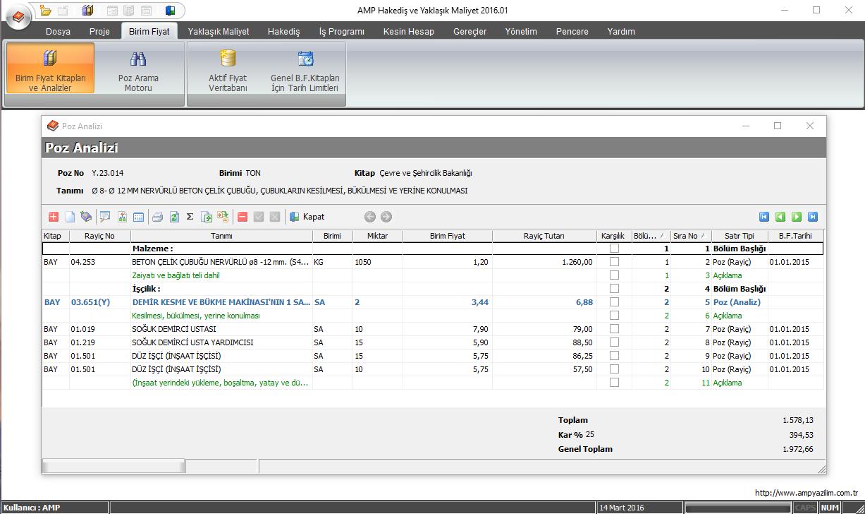 AMP Yazılım hakediş programından bir demir pozu analizi örneği.